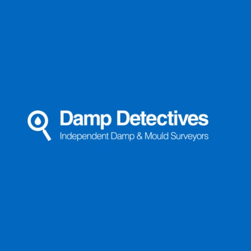 Logo of Damp Detectives Ltd