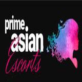 Logo of Prime Asian Escorts