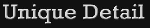 Logo of Unique Detail