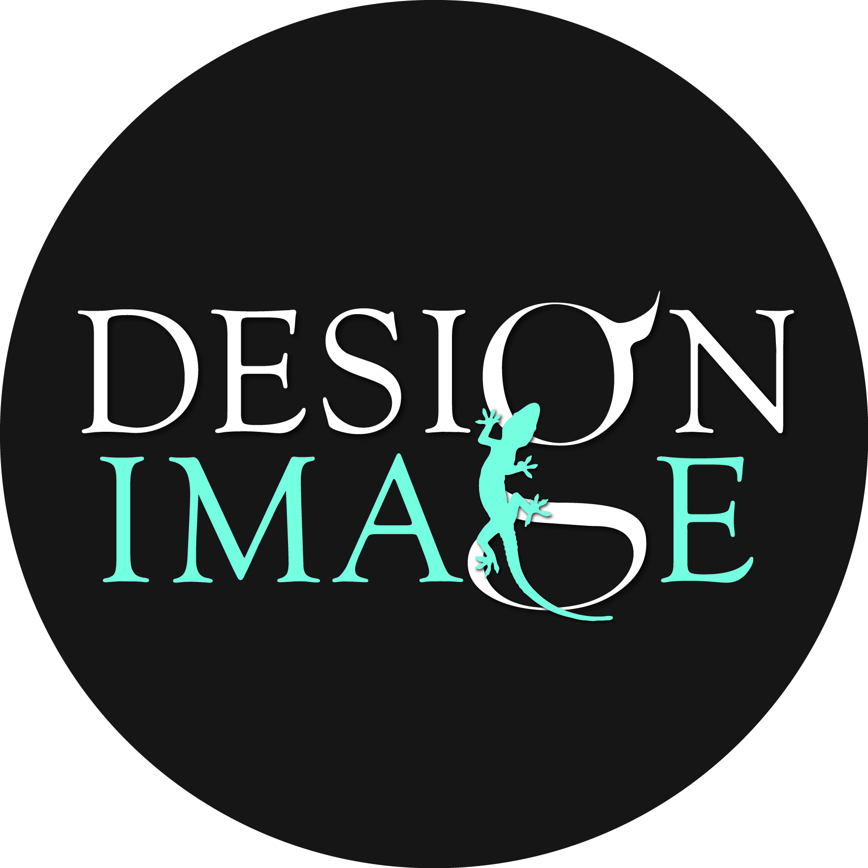 Logo of Design Image Ltd