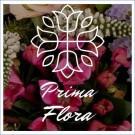 Logo of Prima Flora